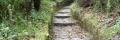 sentieri Ischia