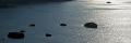 spiaggia di Citara Forio d'Ischia